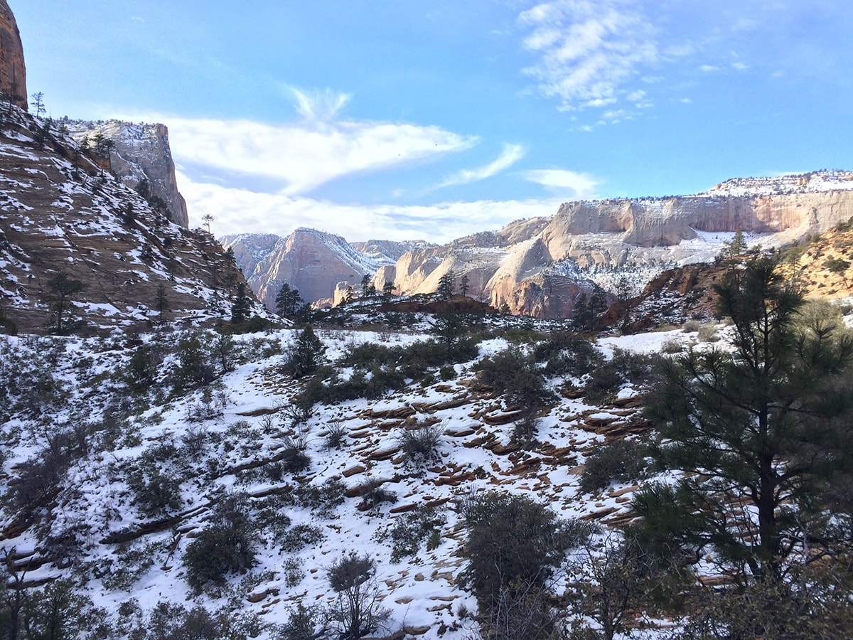 Snow littered across a view along the Observation Point Trail in Zion National Park