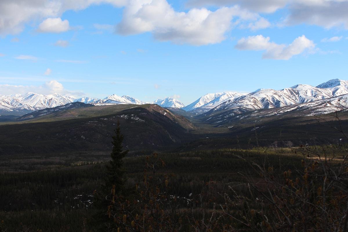 Glaring white mountain range in Denali National Park Alaska