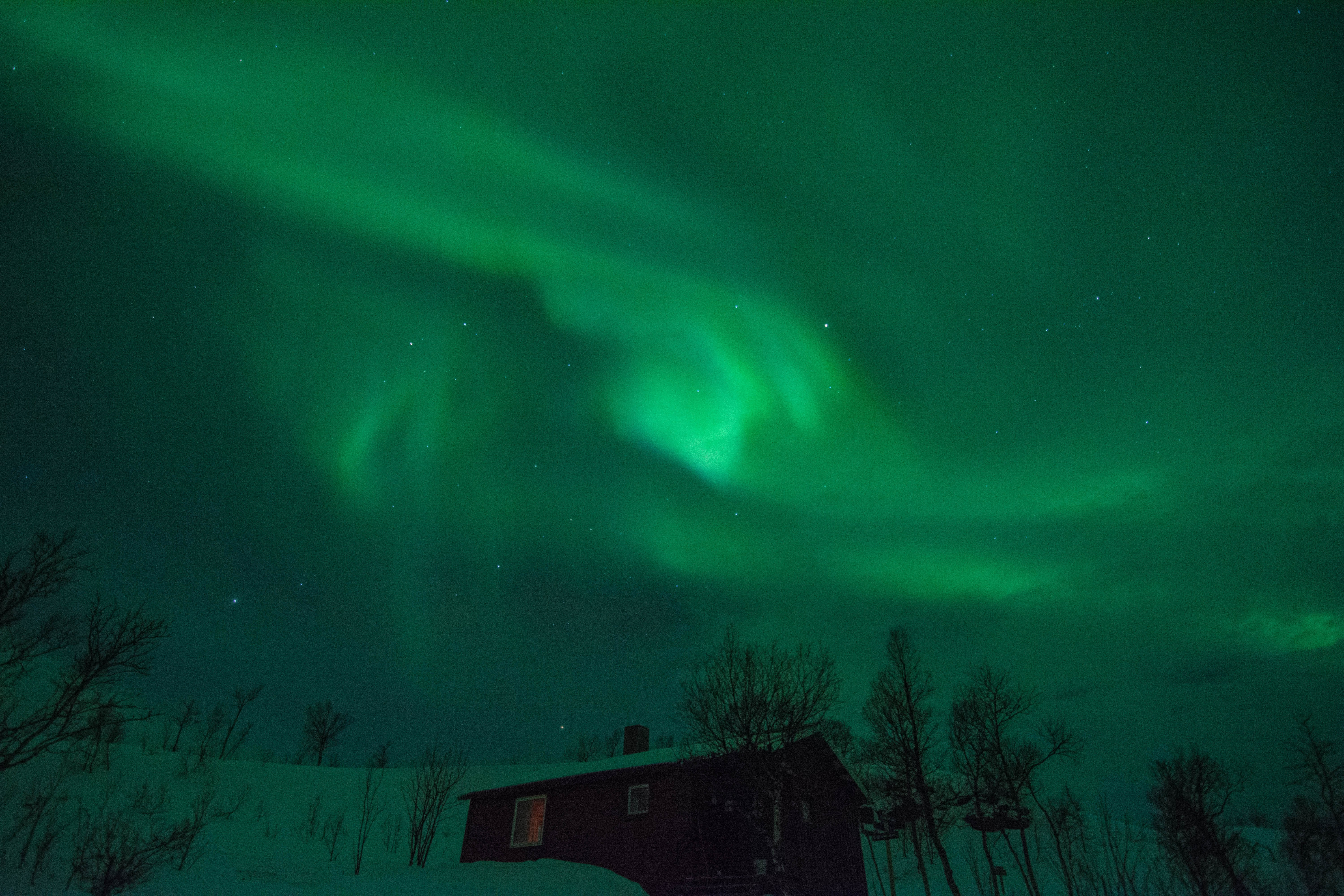 Aurora over a hikers cabin on the island of Senja.